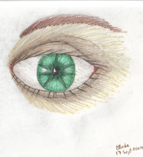 elfin_eye