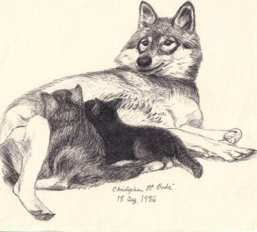 mama_wolf
